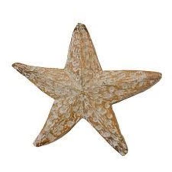 Picture of Flat Wood Starfish Large