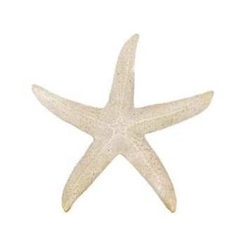 Picture of Rockport Starfish